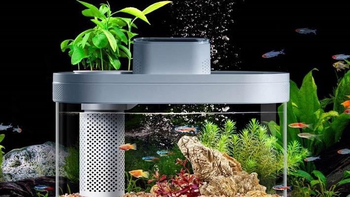 Xiaomi Smart Fish Tank