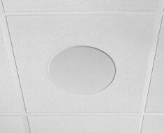 ¡Ideal para conferencias AV! Nuevo Shure Microflex MXN5-C