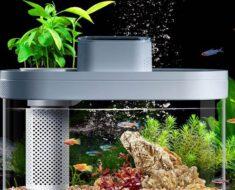 El acuario inteligente de Xiaomi, ¡Llega el Smart Fish Tank!